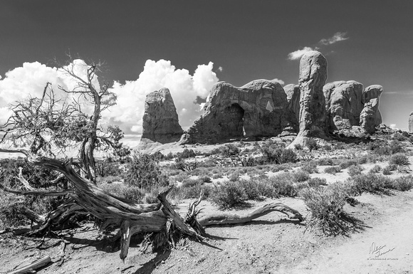ARCHES NP UT -09152013-2359.2